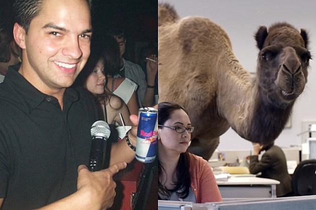 chris_reed_camel