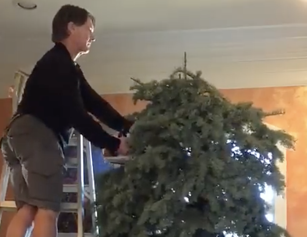 local man uses chainsaw to take down christmas tree video - When To Take Christmas Tree Down